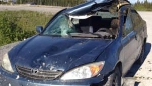 "The photo is from the June 28, 2015 CBC article cited at the post on this page. The caption reads: ""Despite the damage to this car after hitting a moose on Newfoundland's Northern Peninsula, Stephen Bromley says he remembers nothing about the accident. (Submitted photo)."""