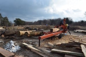 Sawmill Sid worksite in Lakeview. Jaan Pill photo
