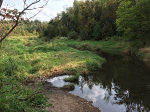 Limehouse Conservation Area, Sept. 17, 2017. Jaan Pill photo
